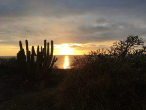 Panorama solnedgång